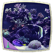 Marine Aquarium Icon