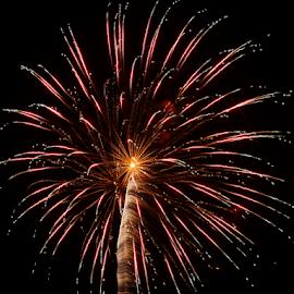 Firework of Art by Tierra McShane - Public Holidays July 4th ( firework, celebration, festive, patriotism, fourth of july, america )