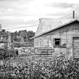 Growing old  by Todd Reynolds - Black & White Buildings & Architecture