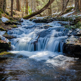 Stokes Waterfall #1 by Al Koop - Landscapes Waterscapes ( stokes state forest, flatbrook )