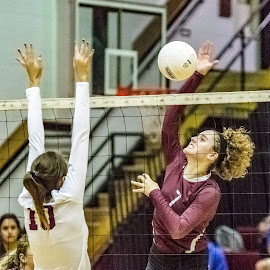 The Spike by Jackie Nix - Sports & Fitness Other Sports ( volleyball, sports, females, prattville high school, women )