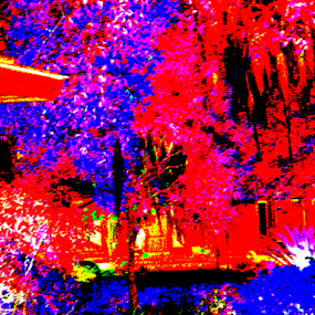 by Edward Gold - Abstract Patterns ( red, white, plants, shapes, yellow, bright, house, trees, blues )