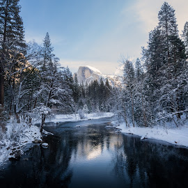Reflecting on Half Dome 2 by Ruben Parra - Landscapes Waterscapes ( national park, reflection, winter, half dome, yosemite, snow, river )