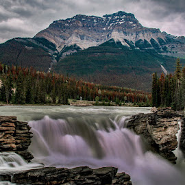 Athabasca Falls by Sue Connor - Landscapes Waterscapes ( waterfalls, canada, waterscapes, athabasca falls, alberta, water,  )