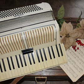 Waiting to be Played by Sharon Hansen - Artistic Objects Musical Instruments ( accordion music,  )