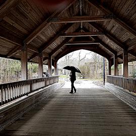 Raining by Susanne Carlton - City,  Street & Park  City Parks