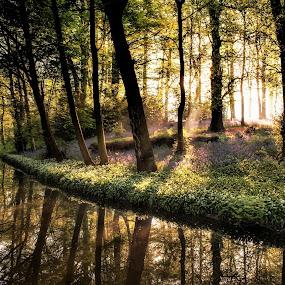 by Russell Mander - Uncategorized All Uncategorized ( sunrise, river )
