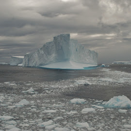 Ice flow in Antarctica by Roger Isaac - Landscapes Travel ( stormy, iceberg, antarctica, ice, special )