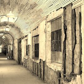 Eastern State Penitentiary 2 by Amber Thomas - Buildings & Architecture Public & Historical ( sepia, prison, windows, metal bars, hallway )