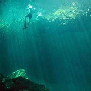 cenote snorkel .jpg