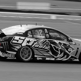 Tander Phillip Island 2015 by Mike Rodgers - Sports & Fitness Motorsports