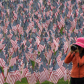 Memorial Day Garden, Boston, MA by Mary D'Alba - People Street & Candids ( flags, flag, memorial day, camera, photographer, memorial garden, photographers, taking a photo, photographing, photographers taking a photo, snapping a shot )