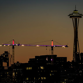 Crane and Needle Sunset by Scott Wood - City,  Street & Park  Skylines ( lights, sony, washington, space needle, iconic, seattle, sunset, a6000, night, crane, cityscape, construction, city )
