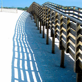 Vanishing Walkway by David Walters - Landscapes Beaches ( sand, gulf shores, perspective, walkway, beach, alabama, landscape, shadows )
