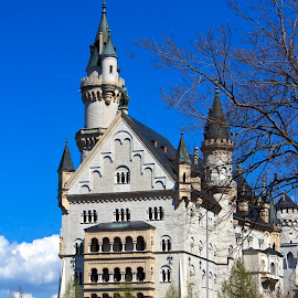 Neuschwanstein Castle - Lower View - Spring 2017  by Dave Skorupski - Buildings & Architecture Public & Historical ( europe, queen, royalty, german, fairy, stone, kings, disney, king, spring, fantasy, european, tale, queens, austrian, royal, trees, castle, bricks, germany, stones, fairytale, austria )