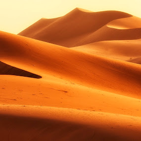 Red Sands by Rafael Uy - Landscapes Deserts ( red sands, riyadh, saudi arabia )