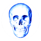 Download Anatomy Quiz APK on PC