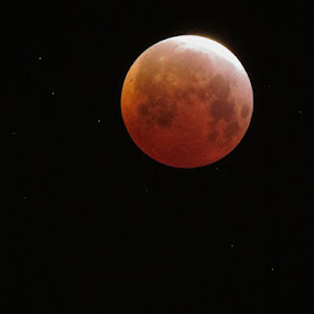 Blood Moon by Michele Whitlow - Landscapes Starscapes ( moon, stars, lunar eclipse, total lunar eclipse, astrophotography, eclipse,  )