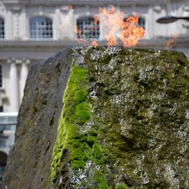 by Rachel Urlich - Nature Up Close Rock & Stone