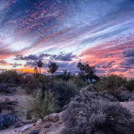 Billowy by Charlie Alolkoy - Landscapes Sunsets & Sunrises ( sunset, arizona, tucson, sunrise )