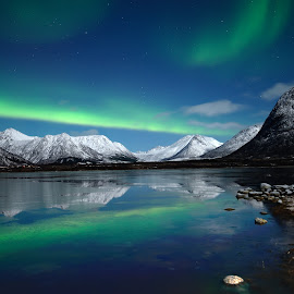 Aurora over Forfjord by Marius Birkeland - Landscapes Starscapes ( nature, aurora, sea, landscape, moonlight )