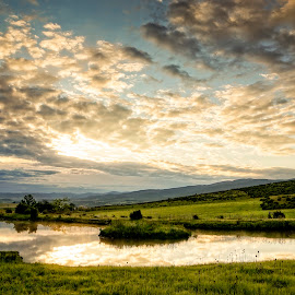 Our Pond at Sunrise by Evan Jones - Landscapes Prairies, Meadows & Fields ( clouds, idaho, grass, green, meadow, reflections, sunrise, pond, sun, camas prairie )