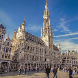 The amazing Grand Place, Brussels by Wira Suryawan - Buildings & Architecture Statues & Monuments ( amazing, europe, cathedral, brussels, grandplace )