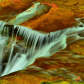 waterfall with leaves by Jim Davis - Landscapes Waterscapes ( stream, watgerfal, fall colors, creek, hdr photography, river )