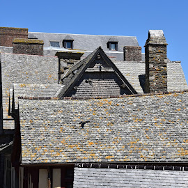 Roofs. by Marcel Cintalan - Buildings & Architecture Other Exteriors ( roofs, architectural detail, wooden, france, historical, architecture, st. michel )