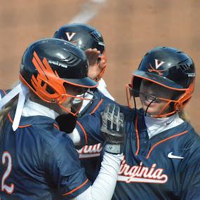 Virginia softball by Benny Lopez - Instagram & Mobile Android ( softball, virginia )