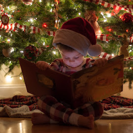 Little Elf by Chris Cavallo - Public Holidays Christmas ( night photography, christmas lights, book, christmas, christmas tree )