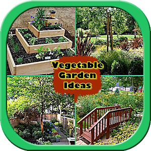 Diy vegetable garden ideas android apps on google play for Vegetable garden layout app