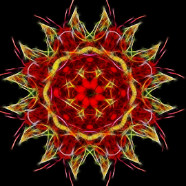 Abstract Christmas Flower by Nancy Bowen - Illustration Abstract & Patterns ( abstract, red, gold, flower )