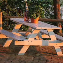 Picnic Table at Sunset by Leah Zisserson - Artistic Objects Furniture ( light and shadows, sunset, patio, lakeside, picnic table )