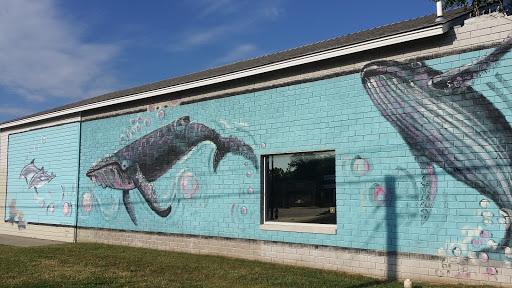 Ocean Mammals Mural