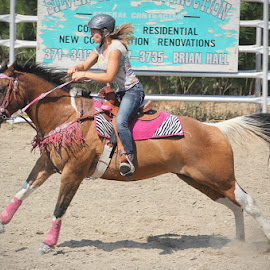 by Lena Arkell - Sports & Fitness Other Sports ( gallop, gymkhana, equine, girl, horse, rodeo, sport, paint )
