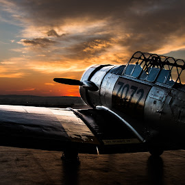 Harvard at dawn by Chantelle Hederman - Transportation Airplanes