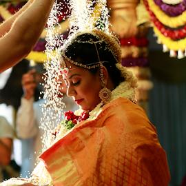 by Dhruv Ashra - Wedding Ceremony (  )