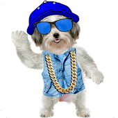 Funny Talking Dog APK for iPhone