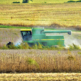 Indiana Harvest by Tim Hall - Transportation Other