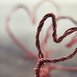 hart of wire  by Bhagwant Singh - Abstract Macro ( macro, hart )