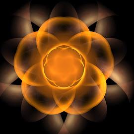 Untouched by Nancy Bowen - Illustration Abstract & Patterns ( black background, orange, fractal, tan, flower, soft glow )