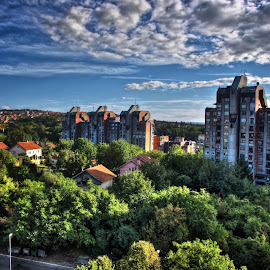 by Dusan Arezina - City,  Street & Park  Neighborhoods ( forest, hdr, belgrade, clouds )