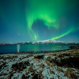 Aurora Borealis by Jens Andre Mehammer Birkeland - Landscapes Mountains & Hills ( reflection, mountain, grass, aurora borealis, northern lights, star, sea, reflections, planet, mountains, winter, stars, snow )