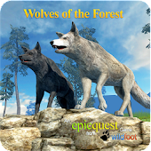 APK Game Wolves of the Forest for iOS