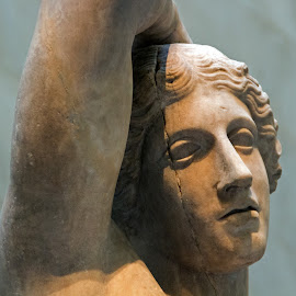 by Judy Florio - Artistic Objects Antiques ( antiquity, sculpture, statue, marble, art, museum )