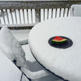 Picnic  by Jon Ablicki - Instagram & Mobile iPhone ( chair, chairs, snow, white, snowy, watermelon )