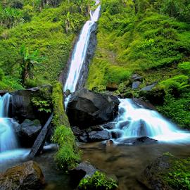 Watu Ondo Waterfal by Didik Hariyanto - Landscapes Waterscapes