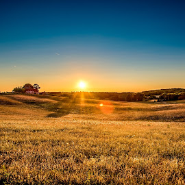 Sunset in Saint Loisirs by Warren Matthews - Landscapes Sunsets & Sunrises ( countryside, curve, skyline, farmland, travel, yellow, sky, nature, farmer, barn, farm house, dordogne, sunshine, july, light, grassland, hill, grass, agriculture, horizon, tourism, sunlight, rural, country, holiday, season, france 2015, outdoors, air, view, panoramic, saint avit loisirs, plant, europe, landscape design, land, holidays, landscape, sun, panorama, farm, rolling, farm landscape, sunny, clouds, beautiful, scenic, morning, farming, field, blue, sunset, outdoor, background, summer, sunrise, scenery )