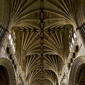 by Natalie Houlding - Buildings & Architecture Other Interior ( church, vaulted ceiling, exeter cathedral, cathedral, architecture )
